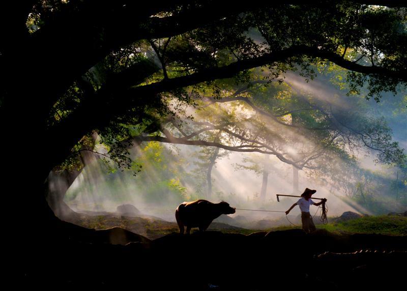 北岐滩涂-杨家溪-小皓滩涂-东壁日落摄影一日游